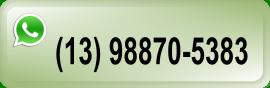 numero whatsapp 13 98875383